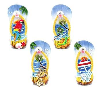 Cota mundial chanclas - 3d diseños - náuticas océano azul imán (4 piezas Set) - tema # 7369: Amazon.es: Hogar