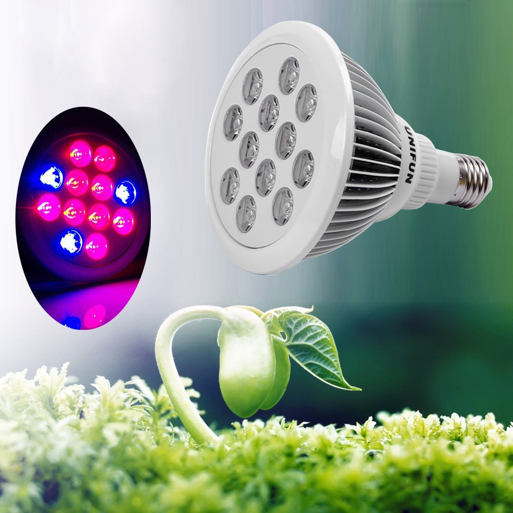 Amazon 24w led grow light bulb unifun e27 growing plant lamp amazon 24w led grow light bulb unifun e27 growing plant lamp for greenhouse hydroponic aquatic indoor plants garden outdoor arubaitofo Choice Image