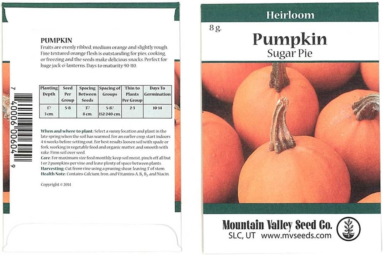 Pumpkin Garden Seeds - Sugar Pie Variety - 5 Gram Packet - Non-GMO, Heirloom Pumpkins - Great for Pies and Canning - Vegetable Gardening Seed