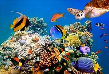 YongFoto 1,5x1m Vinilo Fondo de Fotografia Mundo Submarino Acuario Pescado Coral Arrecife Telón de Fondo Fiesta Niños Boby Retrato Personal Estudio ...