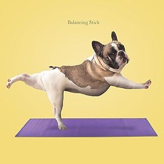 Biglietto di auguri con cane, Bulldog francese (al bastone dell'equilibrio) Bulldog francese (al bastone dell'equilibrio) Magnet & Steel Ltd 8366