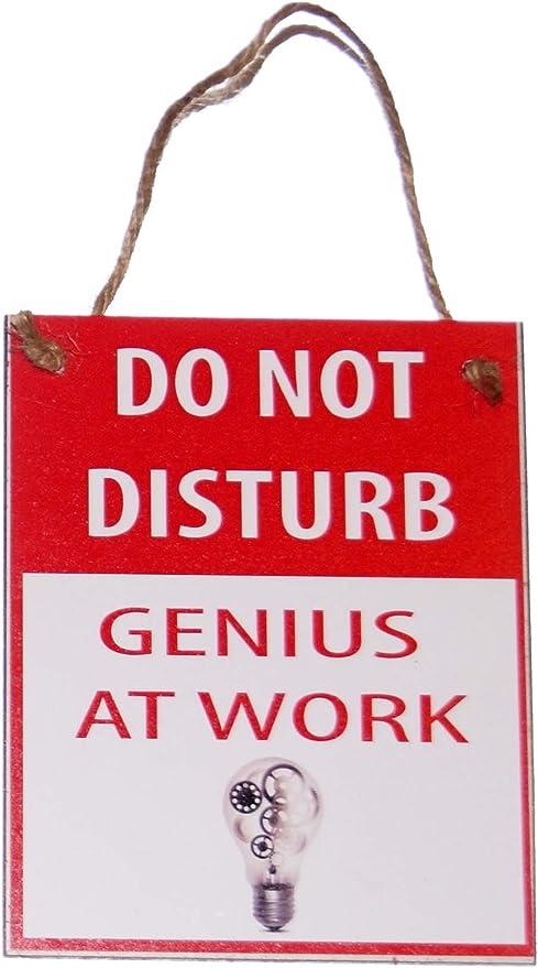 Do Not Disturb Misdemeanors Funny Themed Lightweight Metal Door Knob Hanger