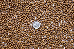 America's Best Koi Food 25 lbs Koi Fish Food with 35% Premium Protein 1/8 Inch - 3/16 inch Floating Pond Pellets for Koi Goldfish and Pond Fish