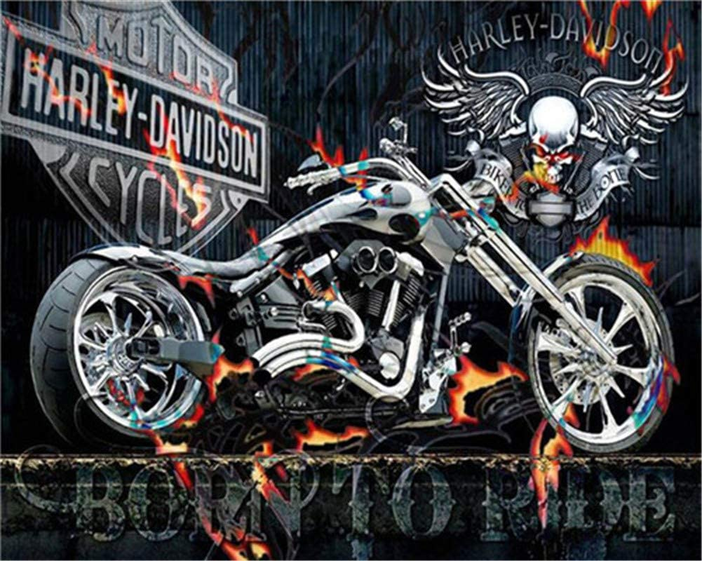 Harley-Davidson 16 x 20 Zoll Gerahmt Malen nach Zahlen f/ür Kinder und Erwachsene DIY-/Ölgem/älde-Kit