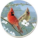 CounterArt Beautiful Songbirds Cardinals Absorbent Coasters, Set of 4