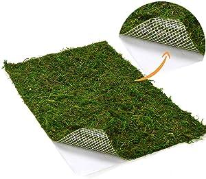 Byher Dried Moss Mat for Wedding Birthday Party Fairy Garden Decorations, Dark Green (Green - 14