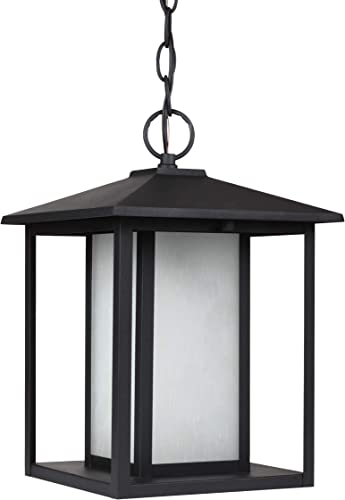 Sea Gull Lighting 69029EN3-12 Hunnington Contemporary One Light Outdoor Pendant Hanging Modern Oustide Fixture, Black Finish