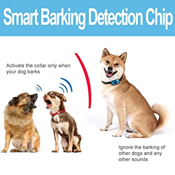 DigyDog No Bark Collar S/M/L, No Shock Vibration & Sound Humane Training Device, Control Your Pet with Anti Barking Dog Collars Free LED Tag Included