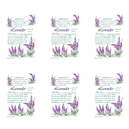 WILLOWBROOK Fresh Scents Scented Sachet - Lavender, 6-Pack