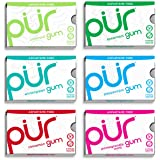 PUR Gum Aspartame-Free 6 Flavor Variety Pack – Coolmint, Spearmint, Wintergreen, Peppermint, Cinnamon and Pomegranate Mint