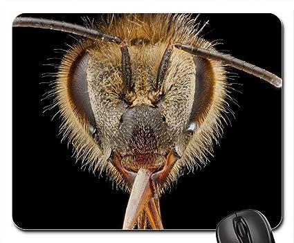 Miel de abeja cabeza Mouse Pad, Mousepad (insectos ratón Pad)