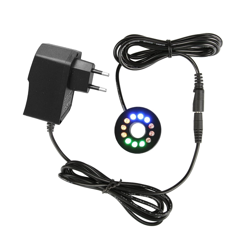Couronne lumineuse TSSS - 12 LED - Étanche - Décor de veilleuse (multicolore) - 1,5 cm de diamètre intérieur