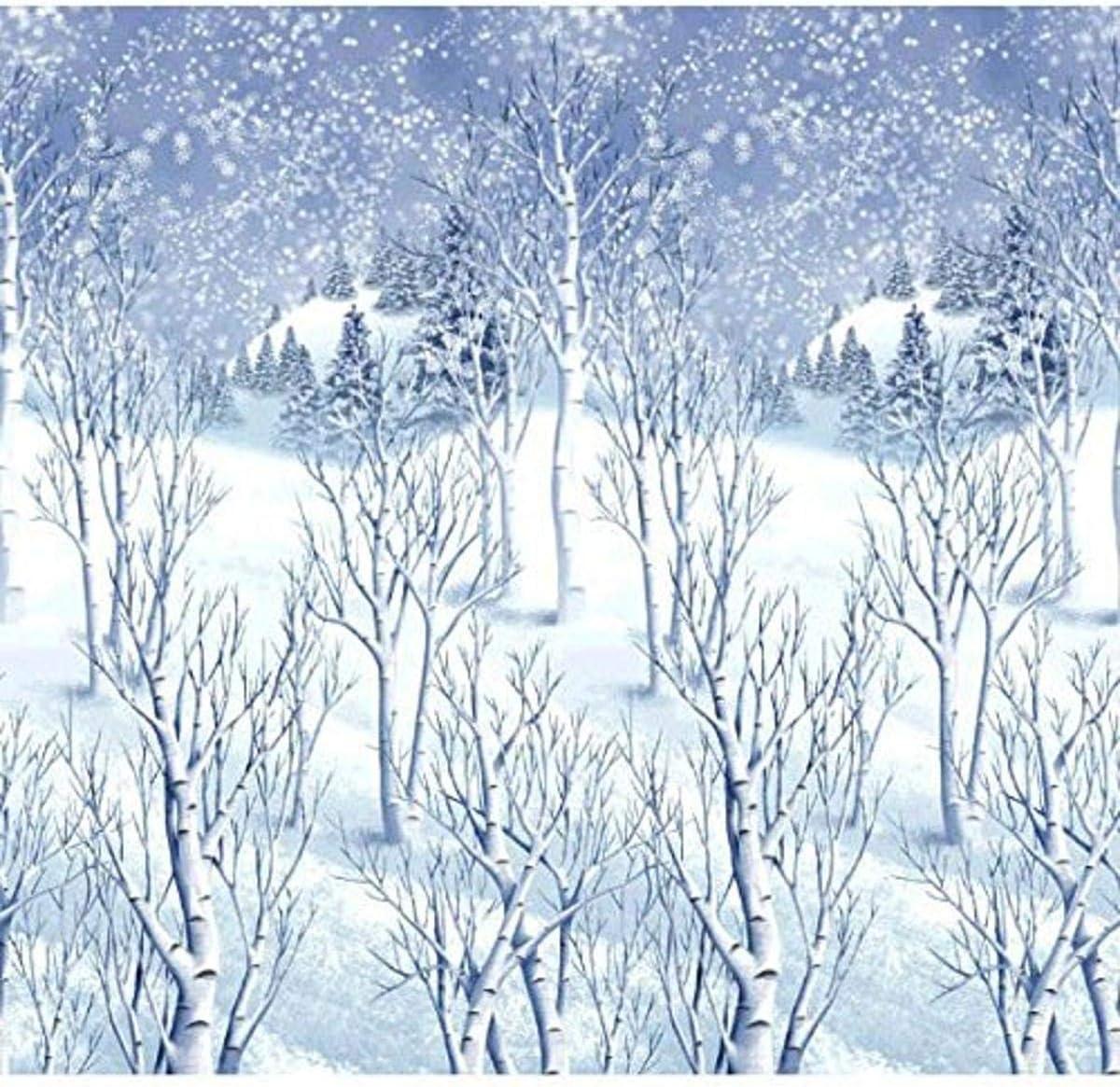 Amscan 674001 Christmas Decoration Winter Wonderland Wall Scene Setter | Plastic 48