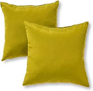 Greendale Home Fashions Outdoor Accent Pillows, Kiwi, Set of 2