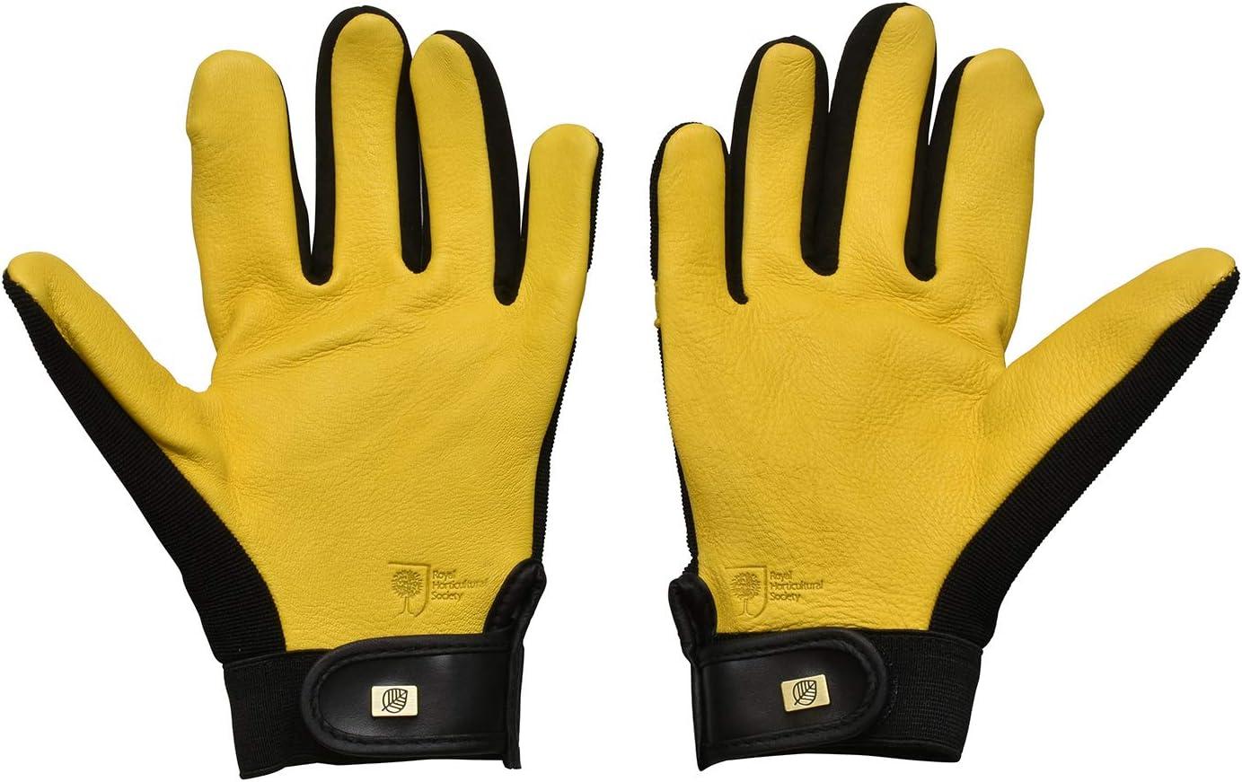 WAGNER Gold Leaf Gloves Damen Gartenhandschuhe der Extraklasse Rindsleder // wasserabweisende Spezialimpr/ägnierung // RHS Auszeichnung DRY TOUCH 25302100