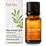 Bay Leaf Essential Oil - 100% Pure Therapeutic Grade for Aromatherapy Diffuser - 10ml - Gya Labs