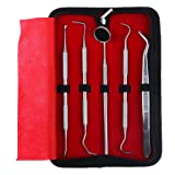 HJZ Dental Hygiene Kit - 5 Piece Stainless Steel