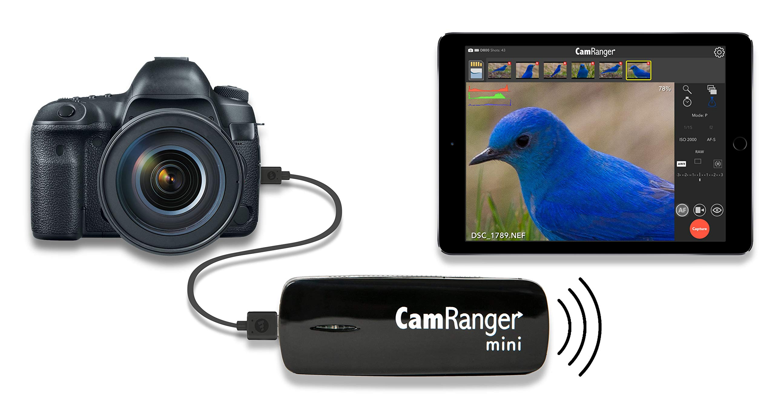 CamRanger Mini (Wireless Remote for Canon and Nikon DSLR Cameras, for iPhone, iPad and Android Devices, intervalometer, Bulb Mode, Change Settings, Camera Control) by CamRanger