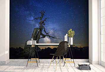 Papier Peint Mural Le Bois Mort Ciel étoilé Voie Lactée Thème
