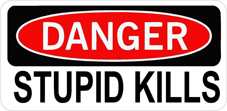 Stupid Kills  Funny Bumper Sticker Decal