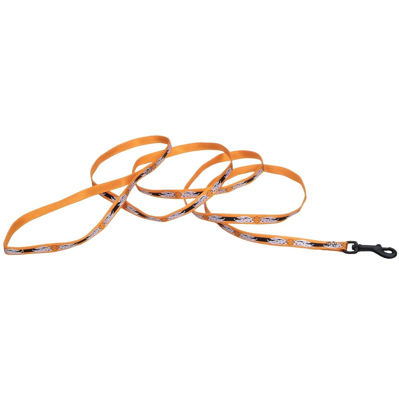 Harley-Davidson B&S Flames Reflective 3 8  x 6' Nylon orange Pet Leash 3 8  x 6'