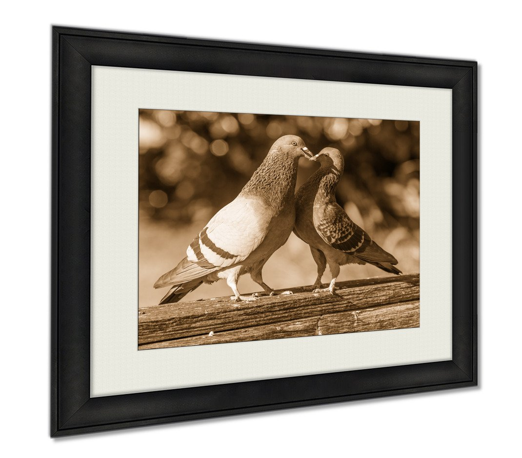 Ashley Framed Prints Pigeons Are Making Love In Park Orlando, Wall Art Home Decoration, Sepia, 34x40 (frame size), AG5916259