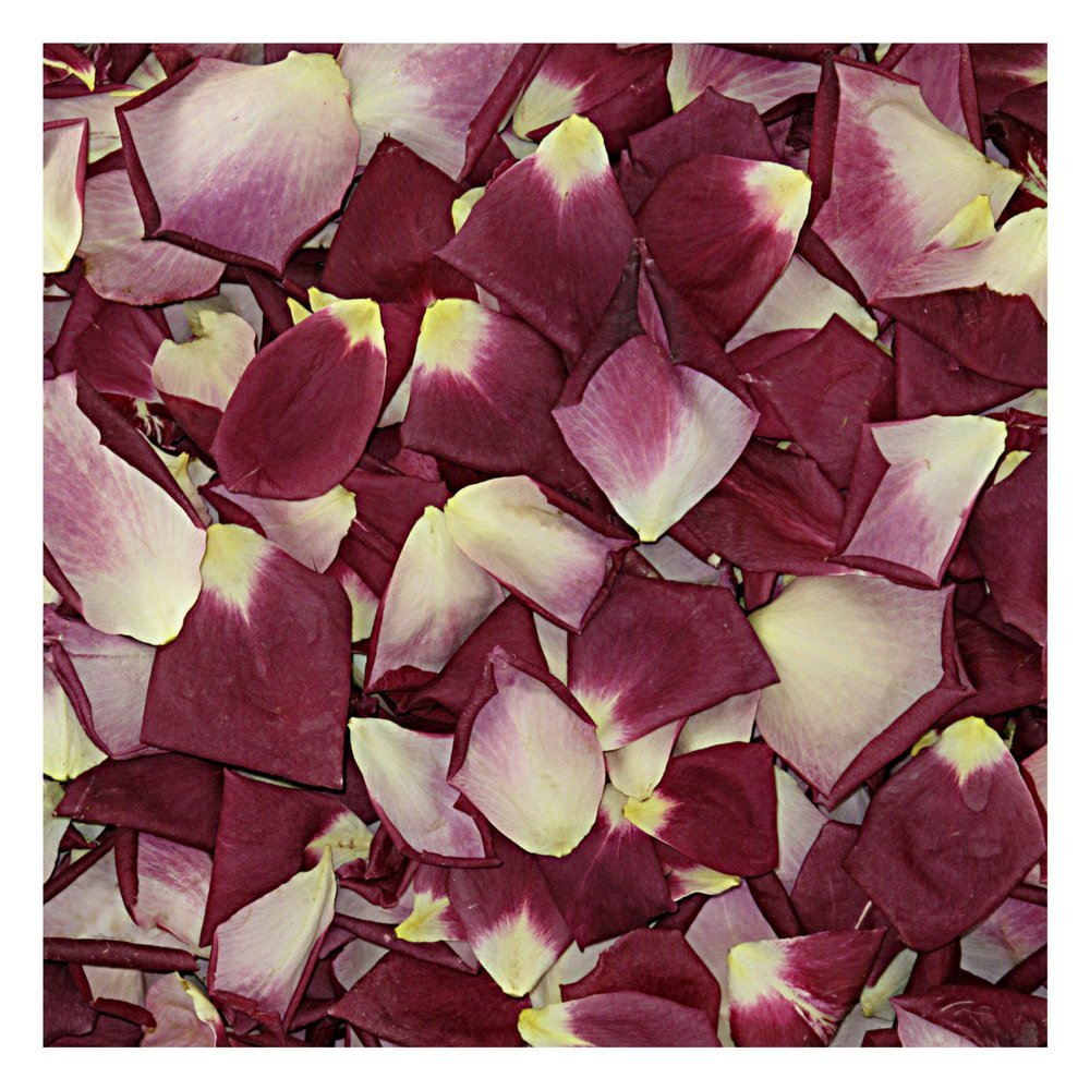Rose Petals 30 cups. Love Rose Petals from Flyboy Naturals. Wedding Decoration.