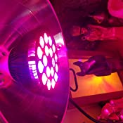 Amazon Com Higrow 36w All Deep Red 660nm Led Grow Light