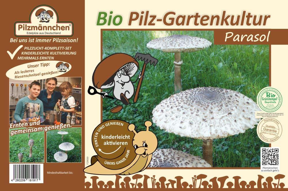 Parasol, fertige BIO Gartenkultur, Pilze im Garten selber züchten Pilzmännchen