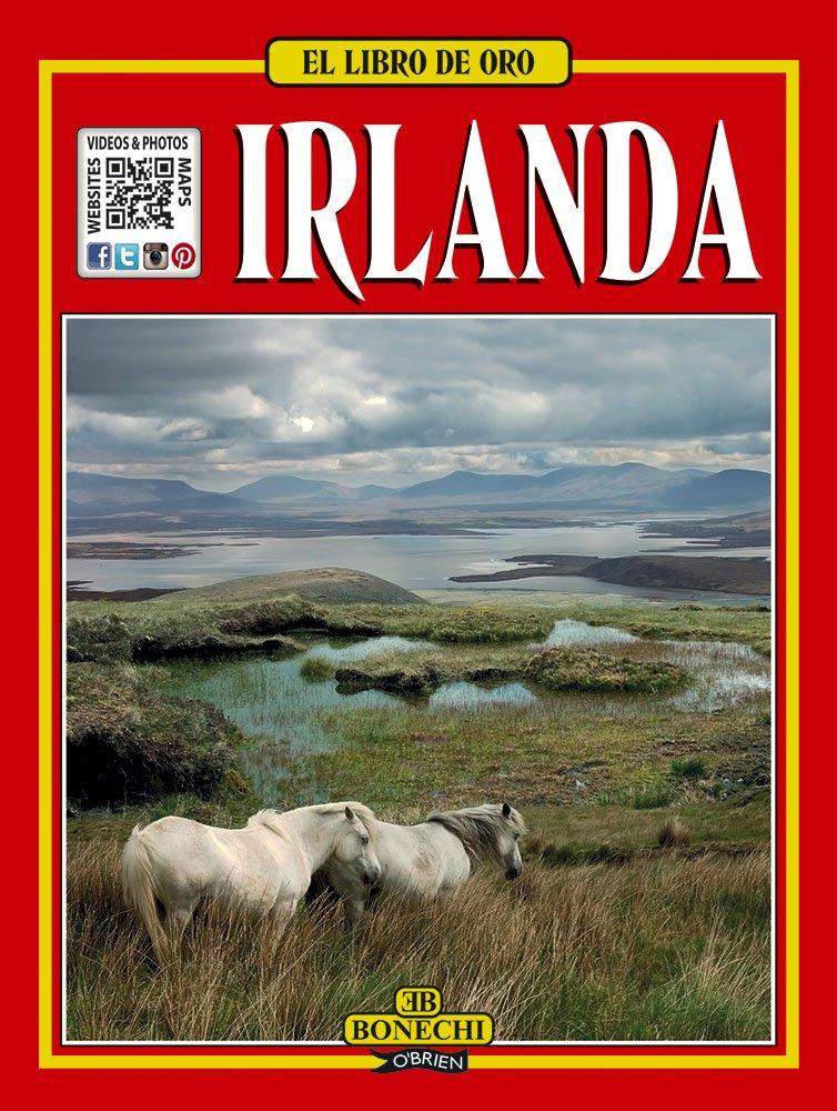 El Libro De Oro - Irlanda Tapa blanda – 1 sep 2001 Frances Power Ghigo Roli O' Brien Press 0862787106