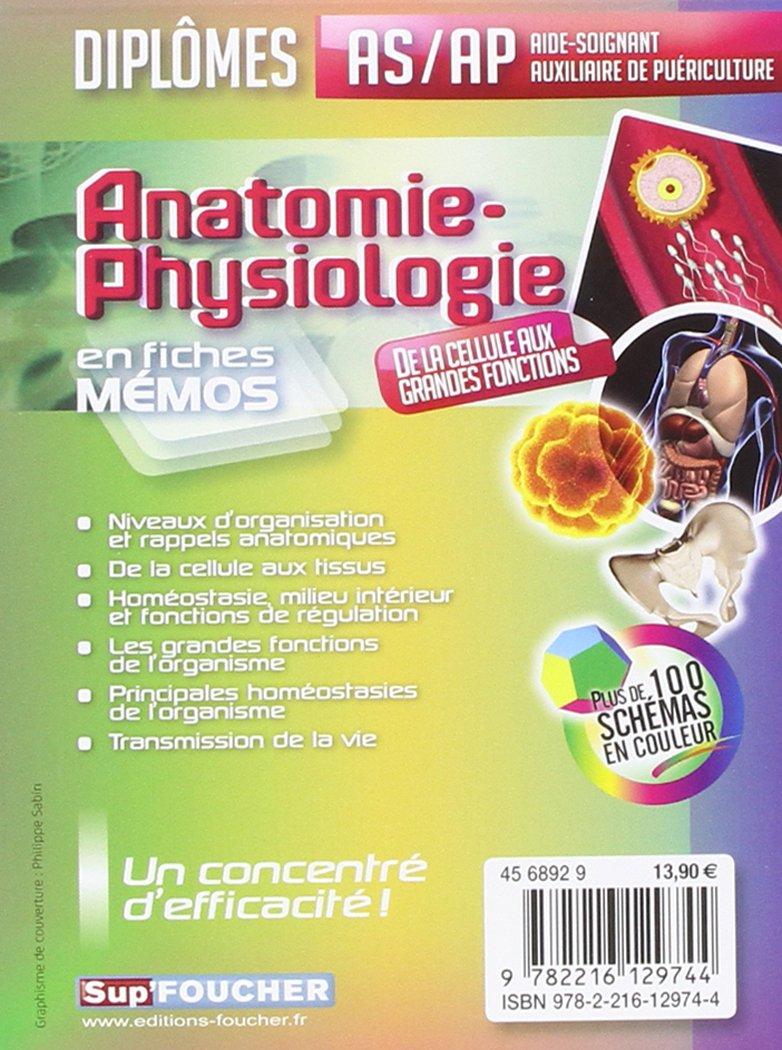 Groß Kamel Anatomie Und Physiologie Bilder - Menschliche Anatomie ...