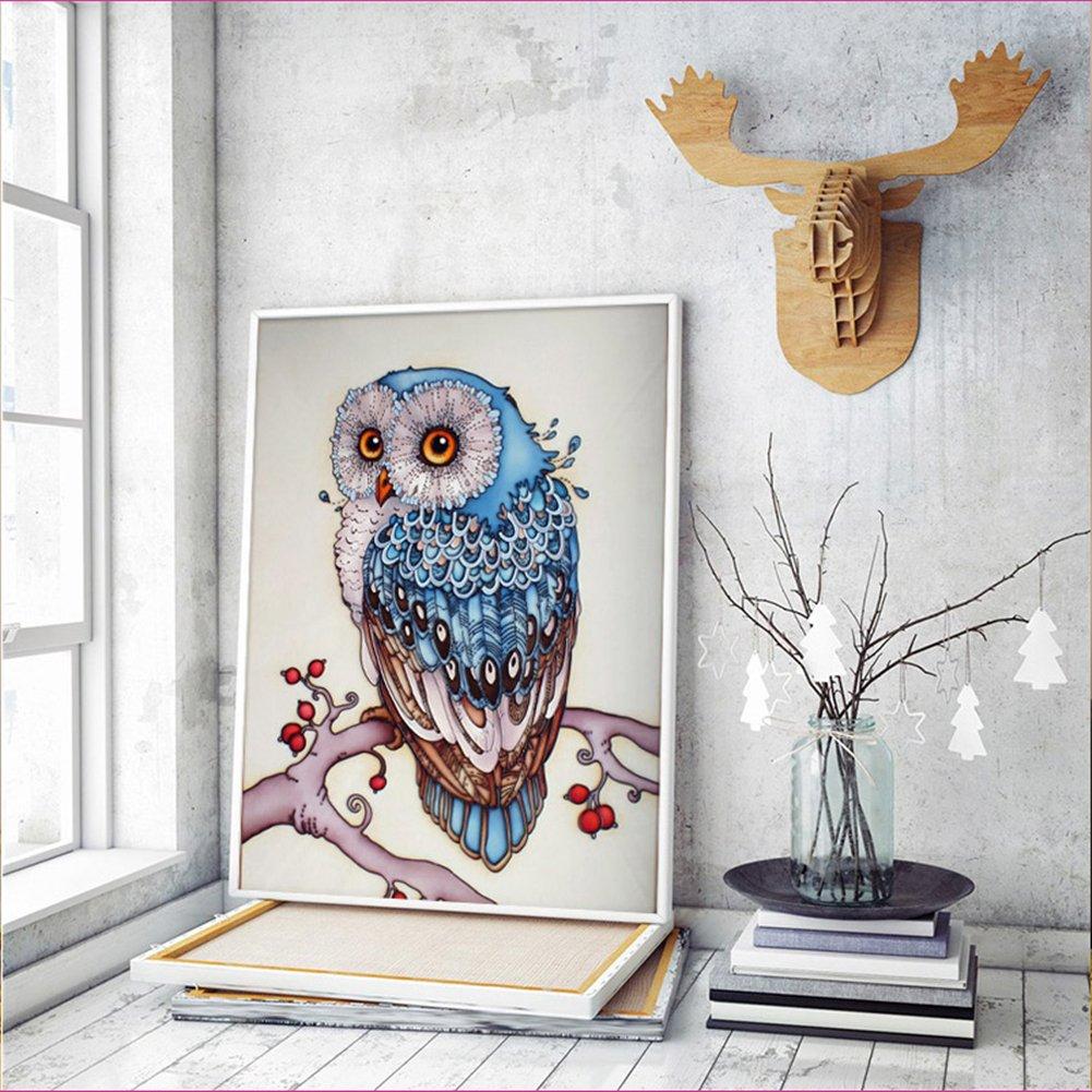 Amazon.com: DIY 5D Diamond Painting Kit, Full Diamond Owl Embroidery ...