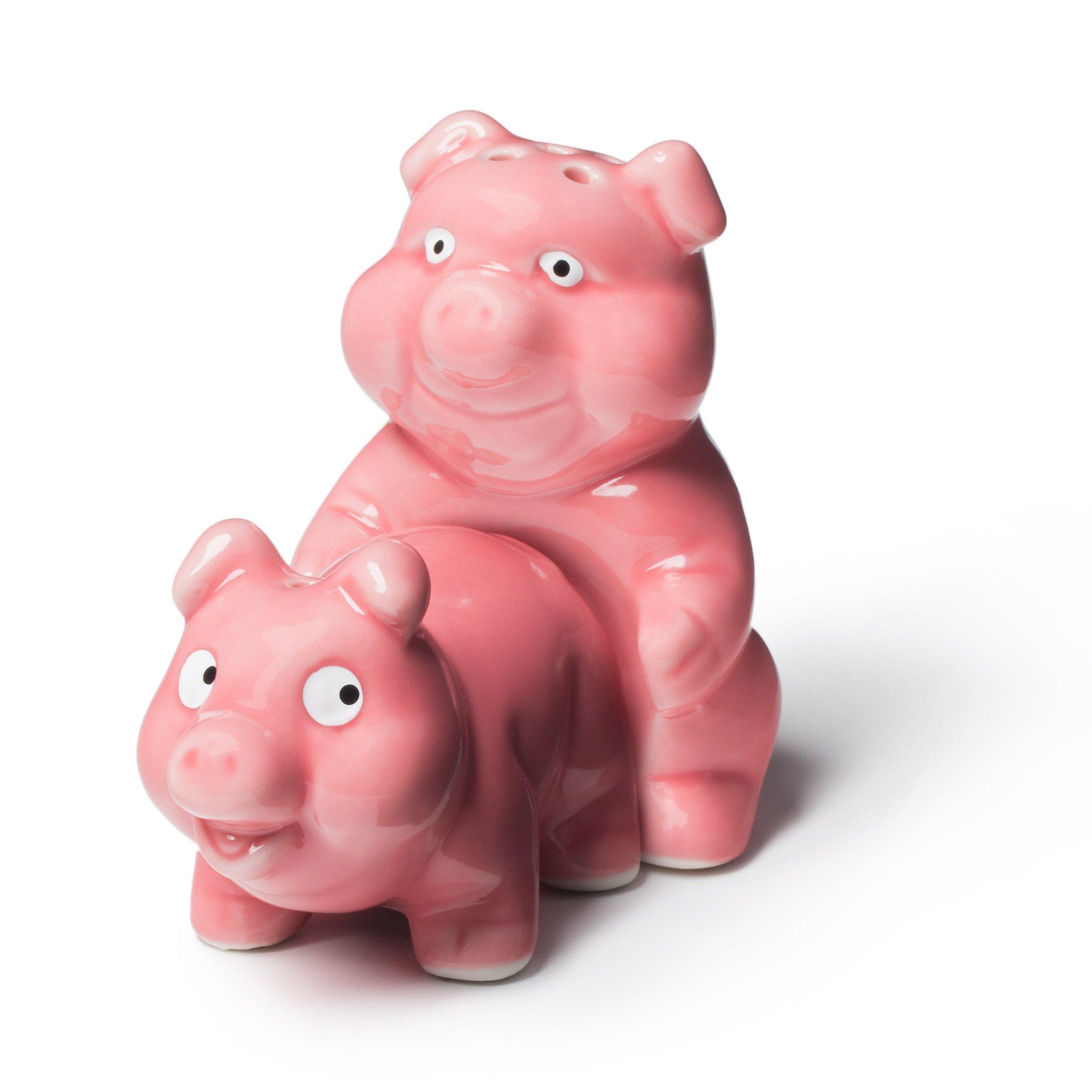 BigMouth Inc Naughty Pigs Novelty Salt and Pepper Shaker Set, Ceramic, Hilarious Kitchen Gag Gift