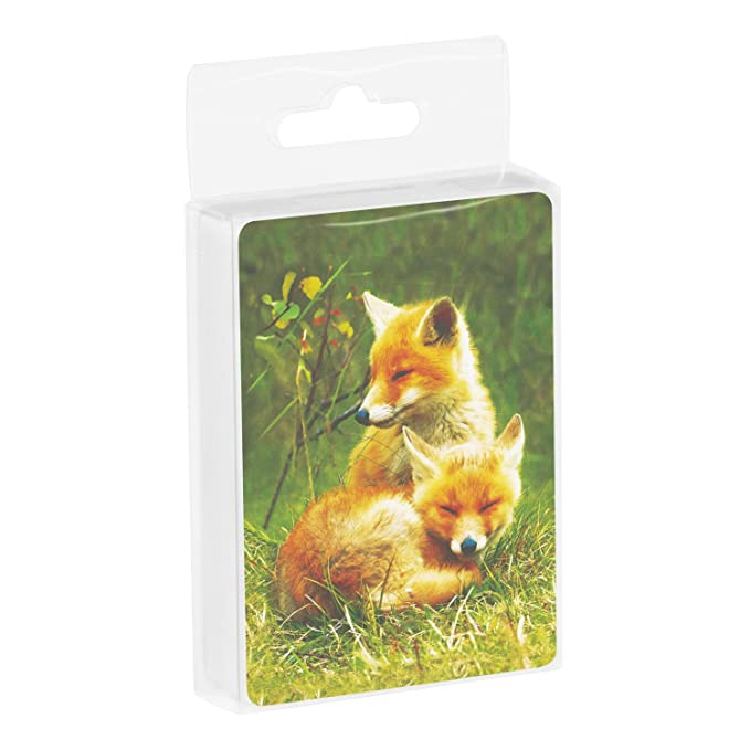 CD15123 Foxes Relaxing 2.5 x 0.8 x 3.5 Inches Tree-Free Greetings Deck of Playing Cards