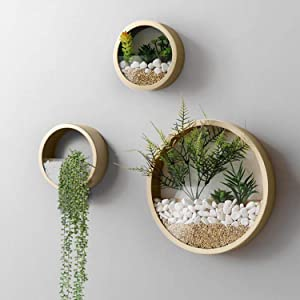 Wistwoxxon 3 Pack Set Wall Planters,Modern Round Glass Wall Planter Succulent Planter Circle Iron Hanging Planter Vase for Herb,Small Cactus Perfect for Balcony, Room and Patio Decor (Gold)