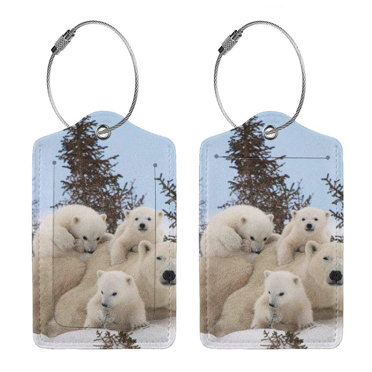 Polar Bear Family Travel Luggage Tags With Full Privacy Cover Leather Case And Stainless Steel Loop