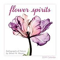 2019 Flower Spirits — Radiographs of Nature by Steven N. Meyers Mini Calendar: by Sellers Publishing, 7x7 (CS-0465)