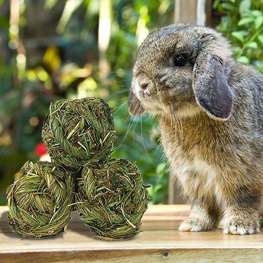 thelastplanet Juguetes Para Masticar Conejos, Conejo Masticar Bola ...