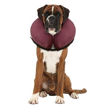 iCollr - El Collar Inflable - Collar Protector para Perros y Gatos en la Recuperación Postoperatoria