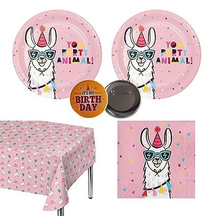 Amazon.com: Llama Party Pack para 20 invitados – platos ...