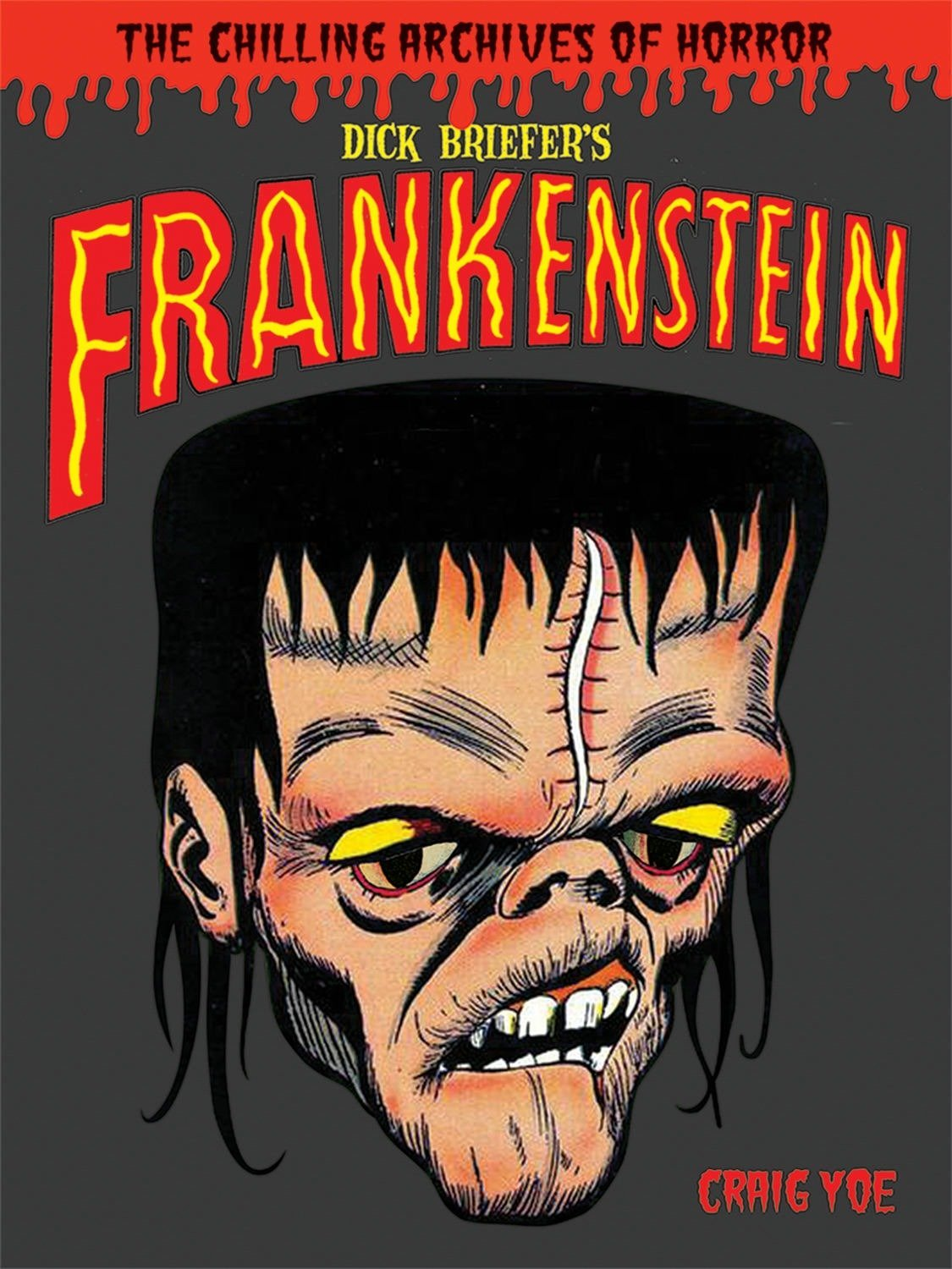 Dick Briefer's Frankenstein (Library of Horror Comics Master) by IDW Publishing