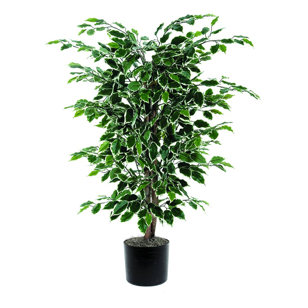 Vickerman 4' Artificial Variegated Ficus Bush set in Black Pot TBU0240-06
