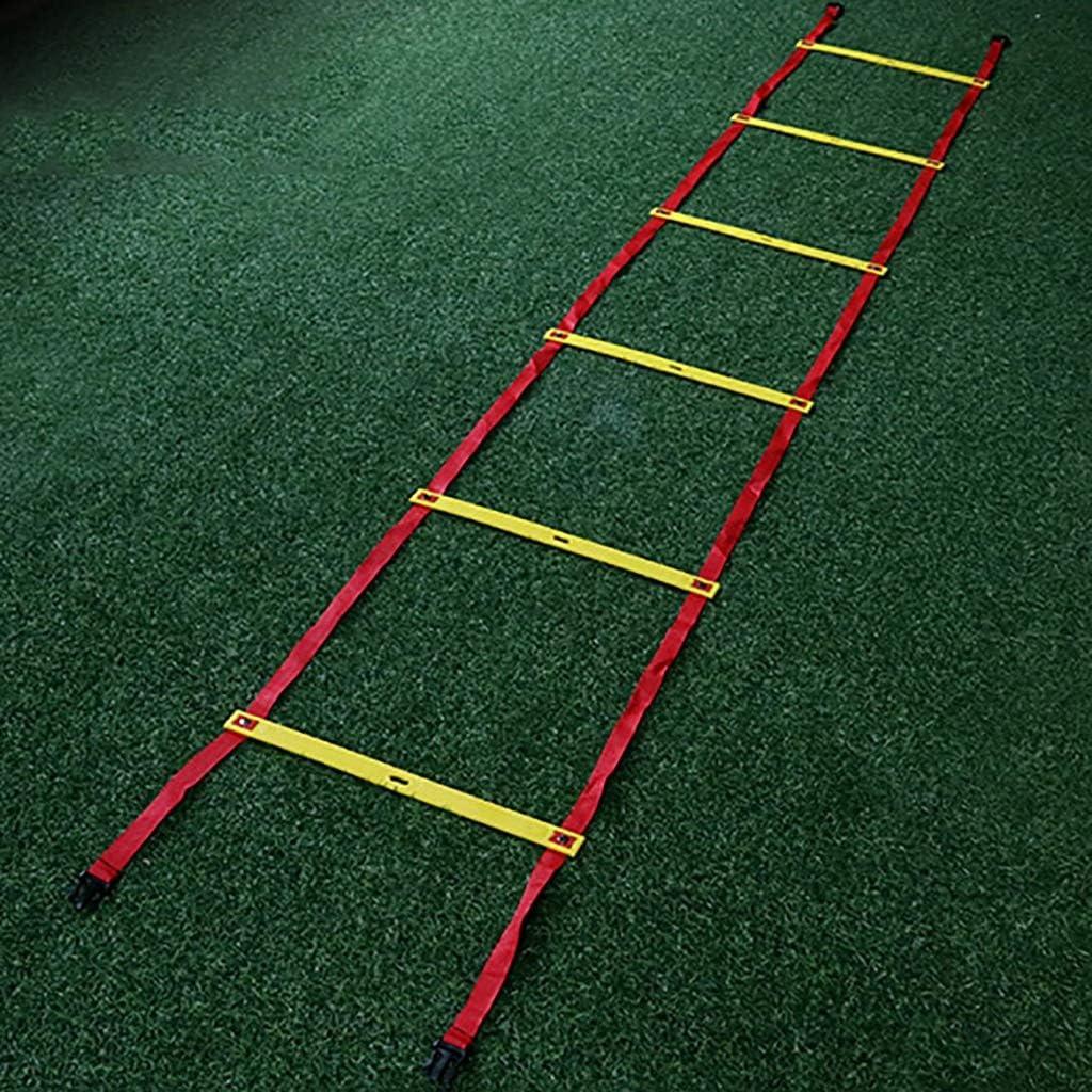 Xin Speed Agility Ladder 3M 6 Rung Tipo Fijo Escalera de Entrenamiento for fútbol Speed Basketball Fútbol Fitness Pies Entrenamiento: Amazon.es: Deportes y aire libre