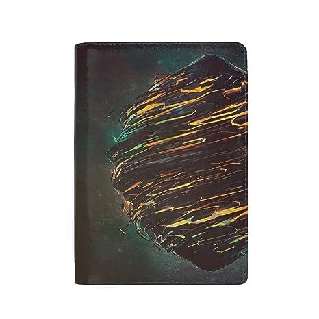 Pattern Art Art Piece Fashion Leather Passport Holder Cover Case Travel Wallet 6.5 In