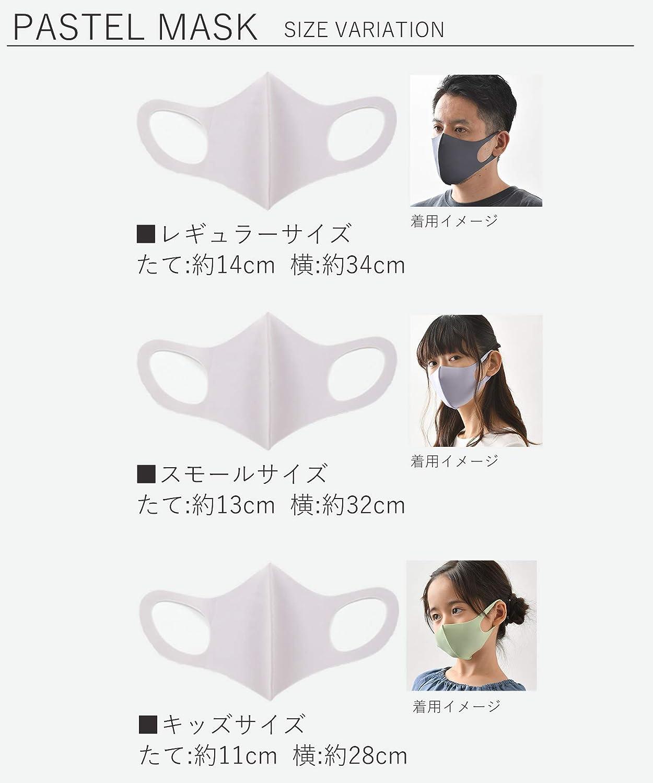 感 サイズ イオン マスク