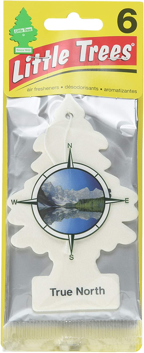 Little Trees Car Air Freshener 6-Pack