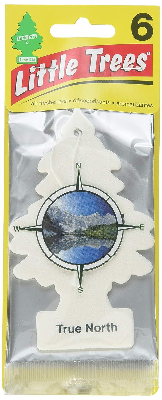 Little Trees Car Air Freshener 6-Pack (True North)
