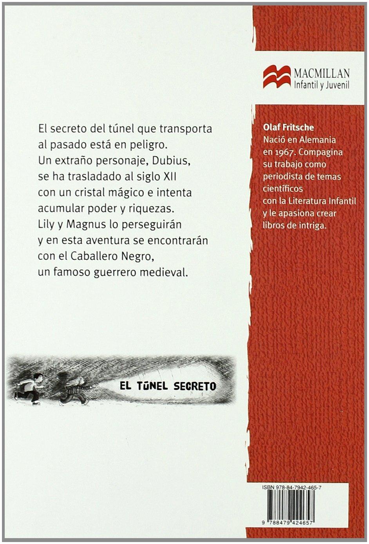 Amazon.com: El misterio del caballero negro (Librosaurio) (Spanish Edition) (9788479424657): Olaf Fritsche, Barbara Korthues: Books