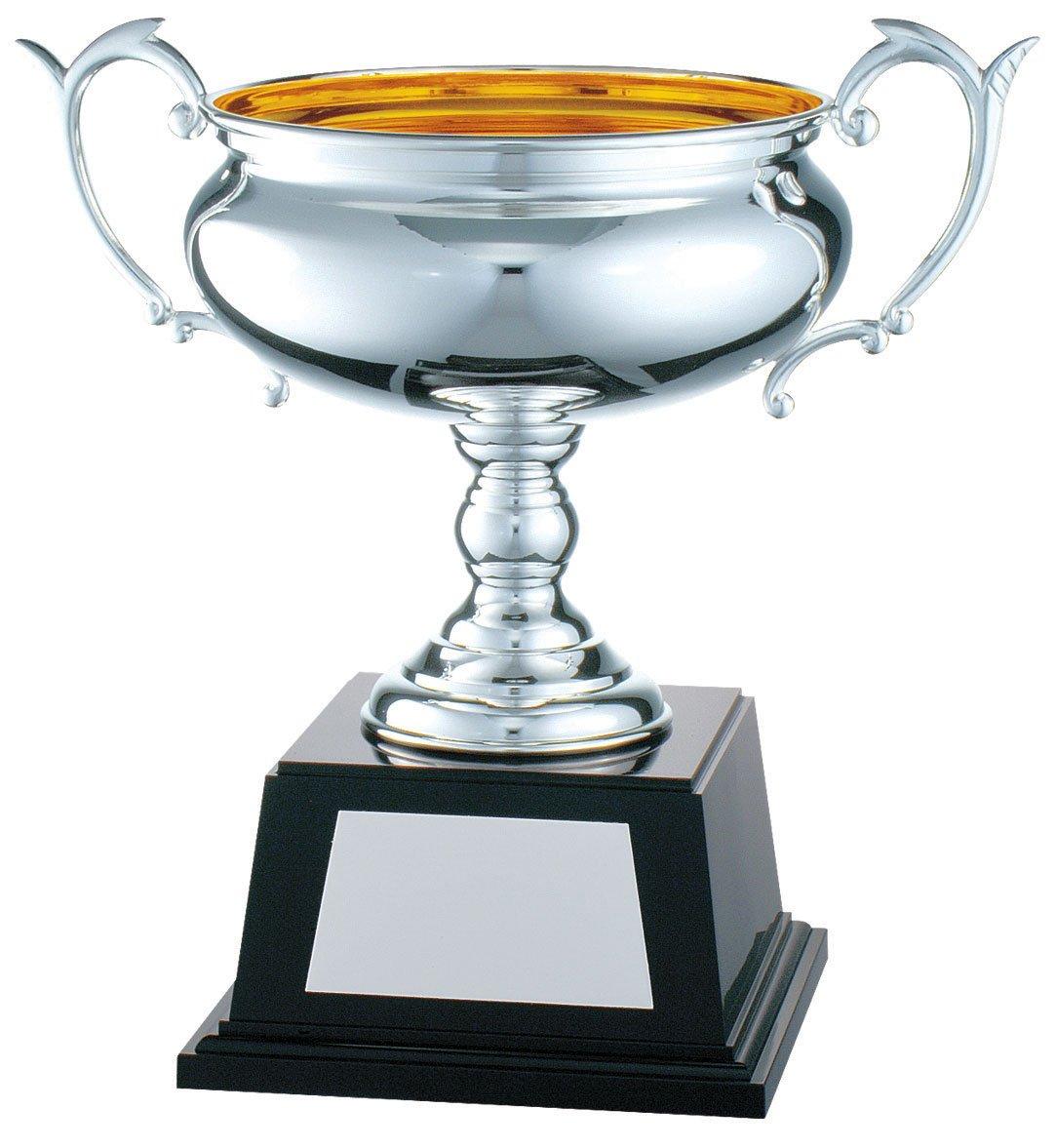 V-SHIKA ジョイカップ JC.1203 B07BQR93MY  Aサイズ