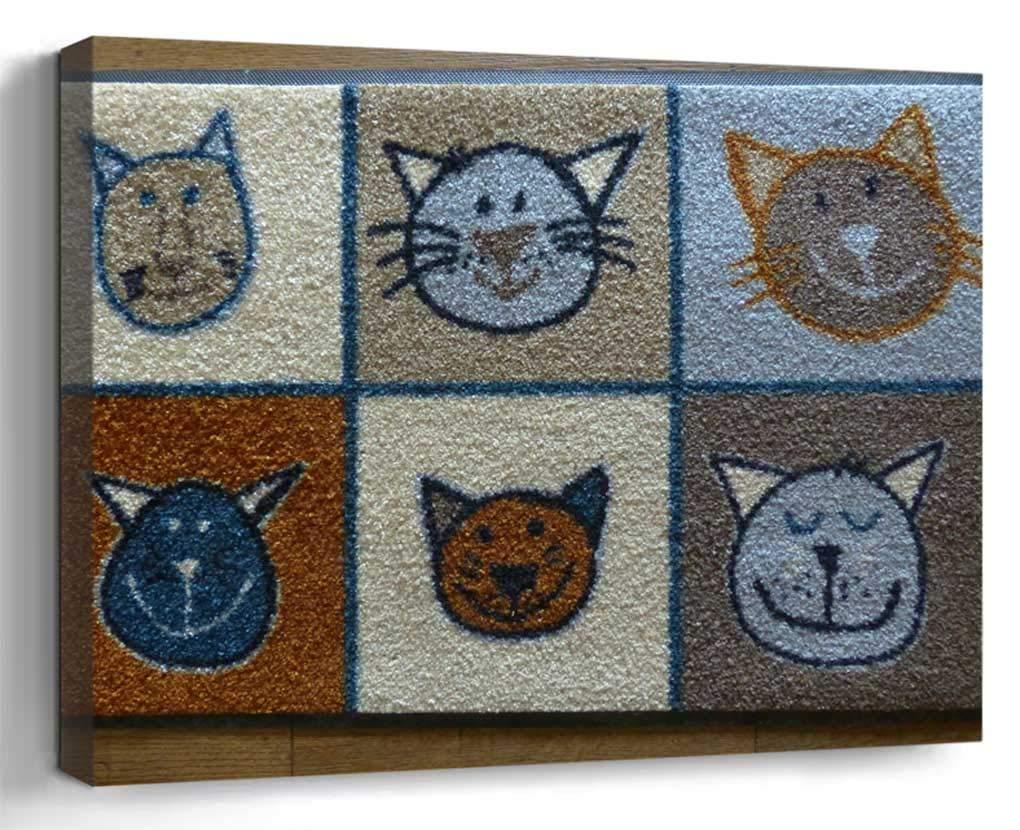 Wall Art Canvas Print Home Decor (20x14 inches)- Floor Mat Shoe Scraper Doormat Dirt Mat Clea